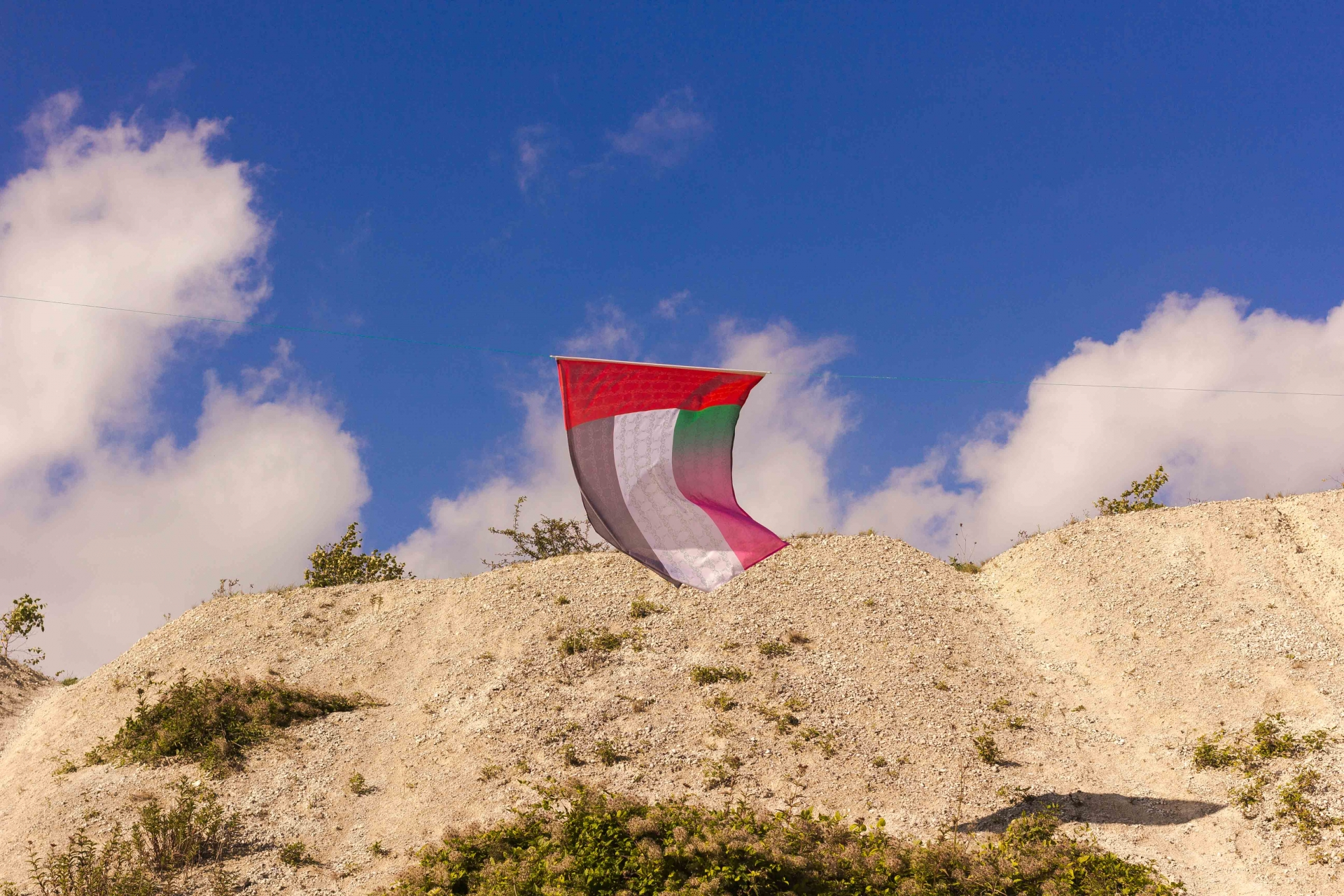 CHRIS CALMER QUEER FLAGS · PROJECT